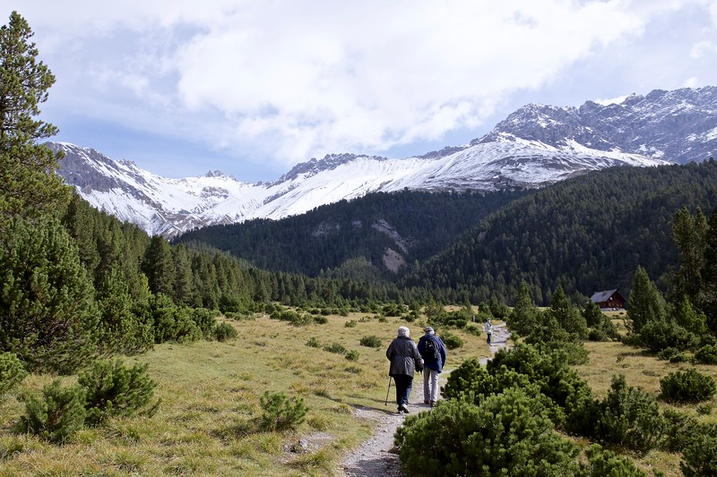 In the Swiss National Park at about 6200 feet