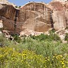 Grand Staircase-Escalante National Monument: Calf Creek Pictographs