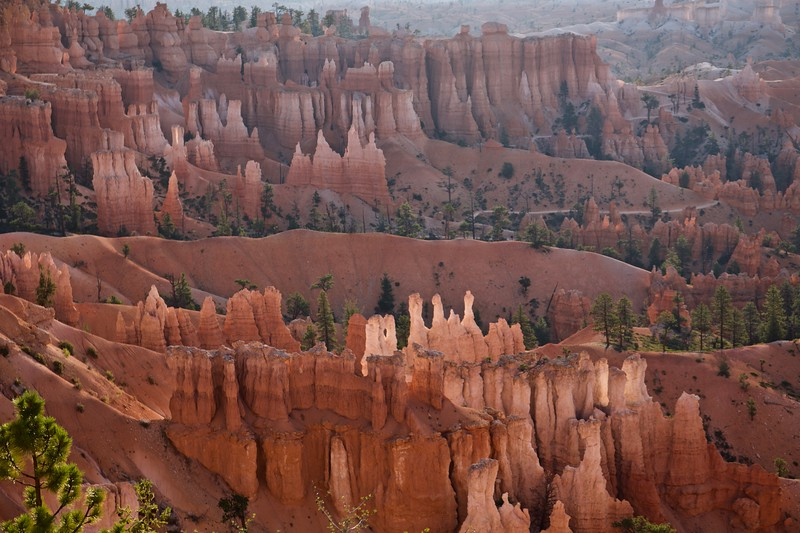Some of the hoodoos are almost translucent.