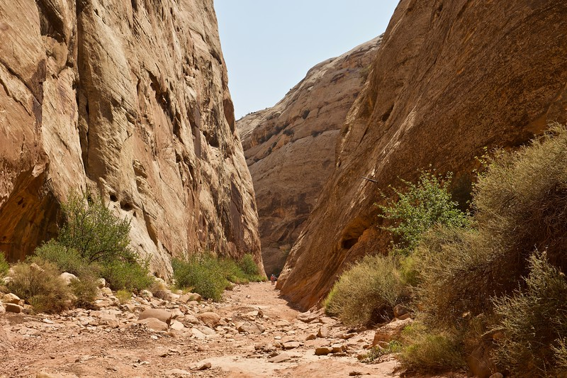 Capitol Gorge Trail, Waterpocket Fold