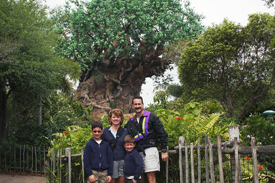 Tree of Life - Discovery Island Trail - Animal Kingdom