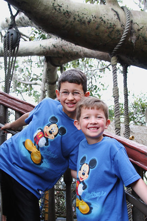 Swiss Family Robinson Treehouse - Magic Kingdom Ethan and Aaron have been after Scott to build a treehouse for several years.  Now they want one just like the Swiss Family Robinson had.