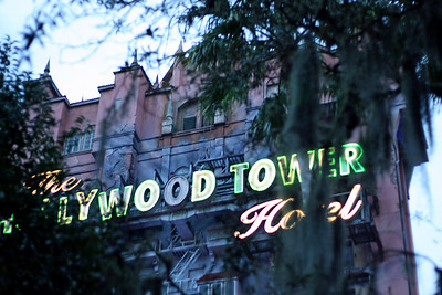 The Tower of Terror - Hollywood Studios This is Aaron's least favorite thing about Disney World.