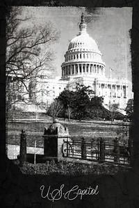 U.S. Capitol - Washington, D.C.