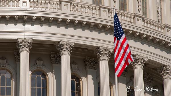 The United States Capitol, Washington DC