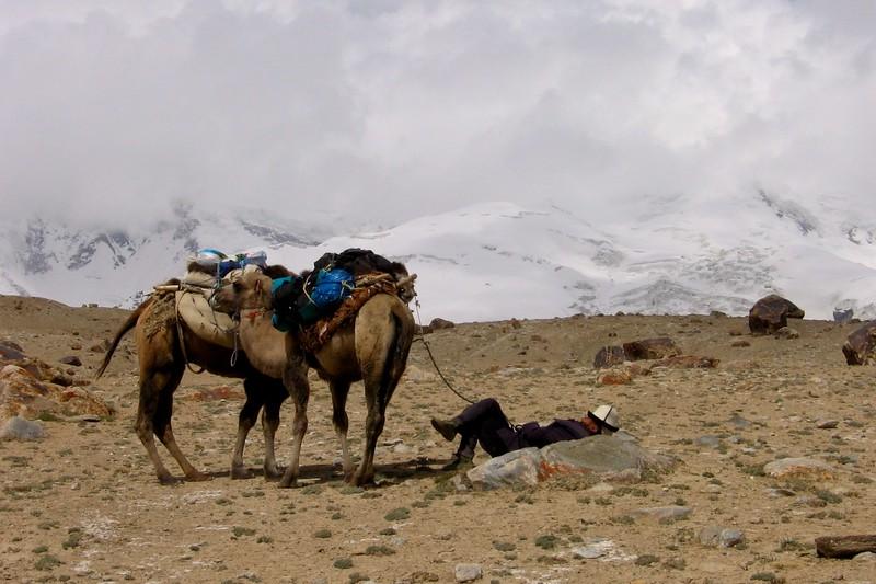 Napping camel driver, Mt. Kongur, Xinjiang, China