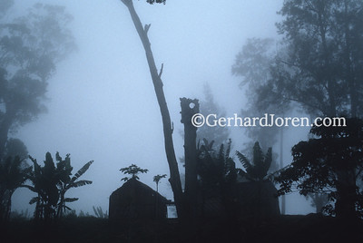 East Timor: Surrounding clouds give this simple Indonesian mountain home a ghostly aspect.