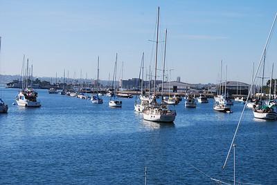 San Diego Harbor-Little Italy 027