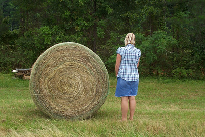 One of Bubba's fresh cut bales at Granger Hill, Equality, AL