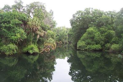 Hillsborough River State Park, Thonotosassa, FL