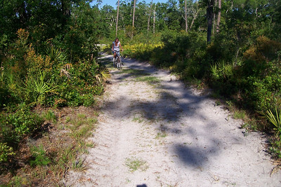 Pedaling hard through the sand at O'Leno State Park, High Springs, FL