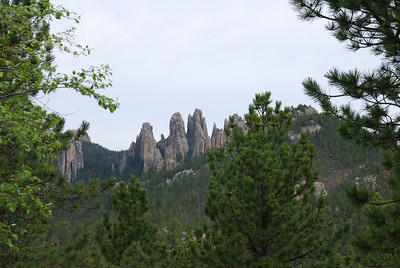 Iron Mountain Road in Custer State Park, Custer, SD