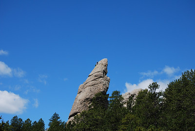 That's a guy up there in Custer State Park, Custer, SD