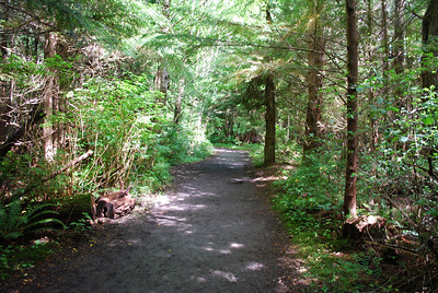 Trail on Cape Flattery, Neah Bay, WA