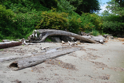 On the beach on the Strait of Juan de Fuca, Sekiu, WA