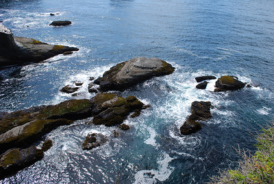 View at the end of the Cape Flattery trail, Pacific Ocean, WA