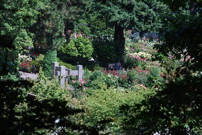 Toni's Visit, Portland OR 8-10-09 001