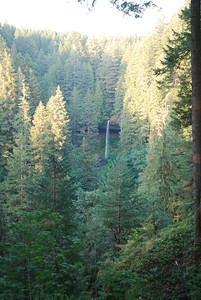 Bagby Hot Springs, Estacada OR 9-3-09 059