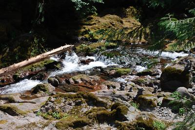 Bagby Hot Springs, Estacada OR 9-3-09 024