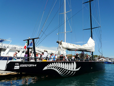 Racing the America's Cup Boats