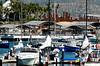 Marina in Cabo San Lucas.