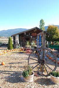 Log Barn Farm, Lake Mara  BC 10-12-09 020
