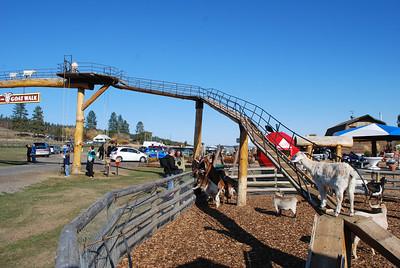 Log Barn Farm, Lake Mara  BC 10-12-09 007