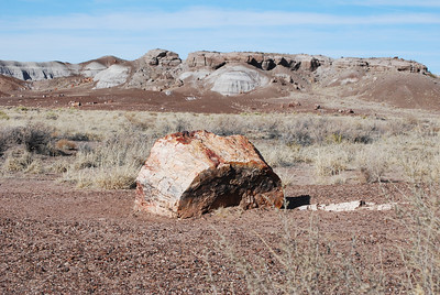 Sante Fe, NM, Moenkopi, Petrified Forest N P , AR 124