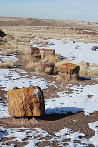 Sante Fe, NM, Moenkopi, Petrified Forest N P , AR 132