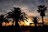 Sunset over the marina in Faro.