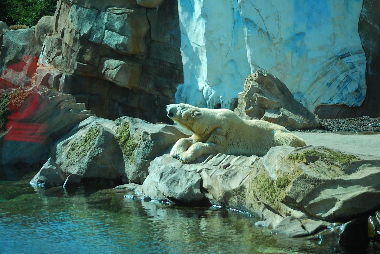 Louisville Zoo, KY 249