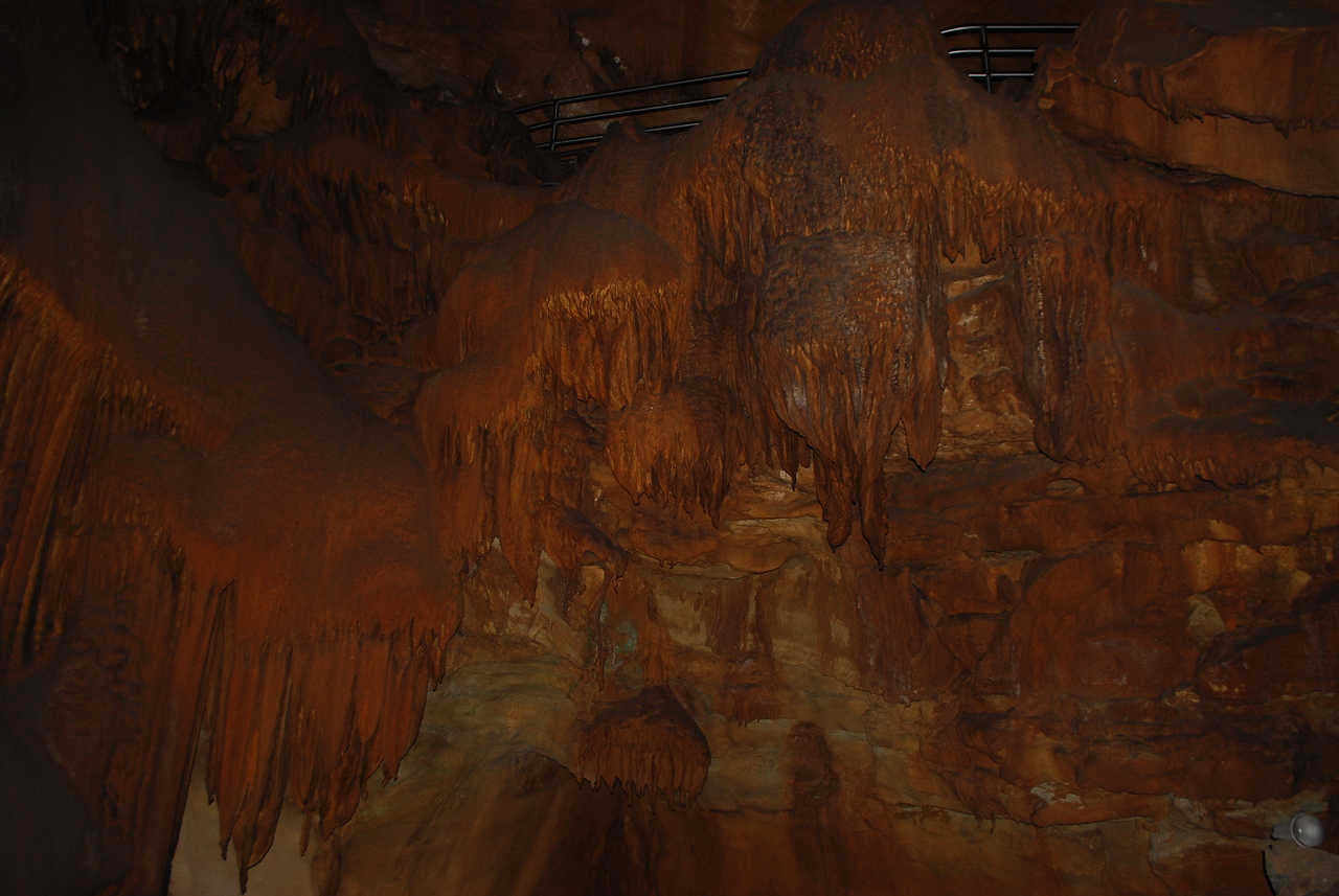 Mammoth Cave NP 4-25-12 048