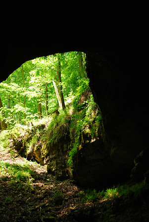 Mammoth Cave NP 4-25-12 066