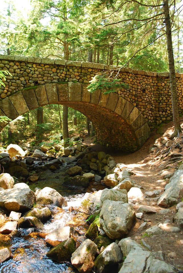 6-22-12 Long Pond-Jordan Creek Hike, ME 027