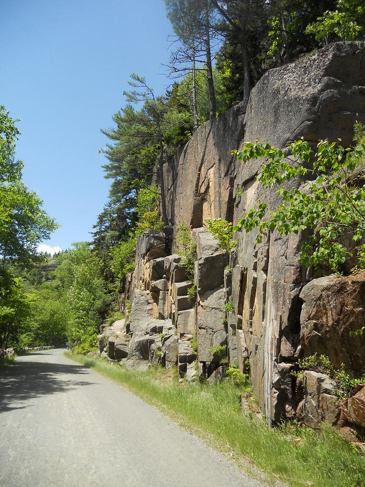 6-10-12 Buzzy pics, Acadia Bike Ride 041