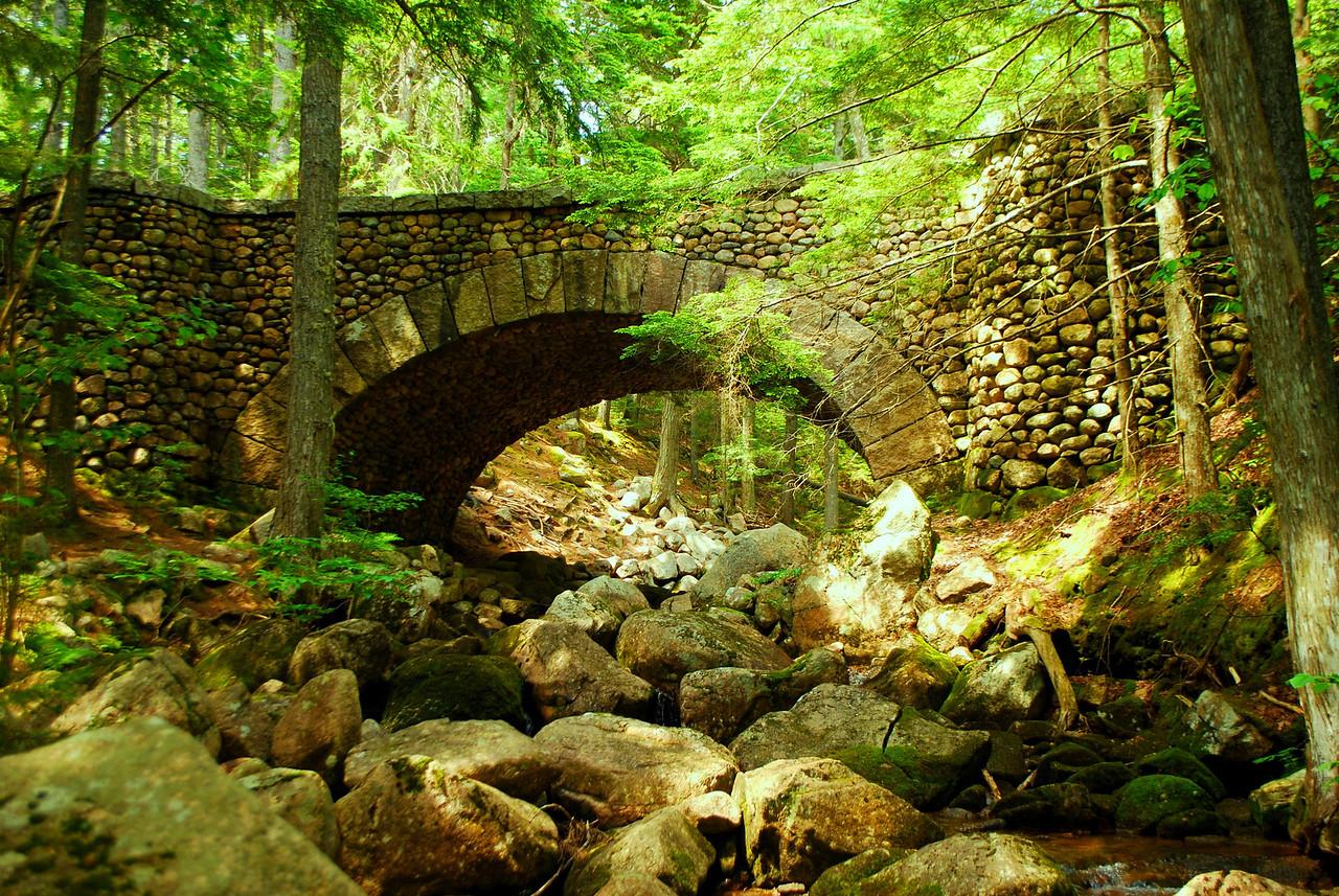 6-22-12 Long Pond-Jordan Creek Hike, ME 042