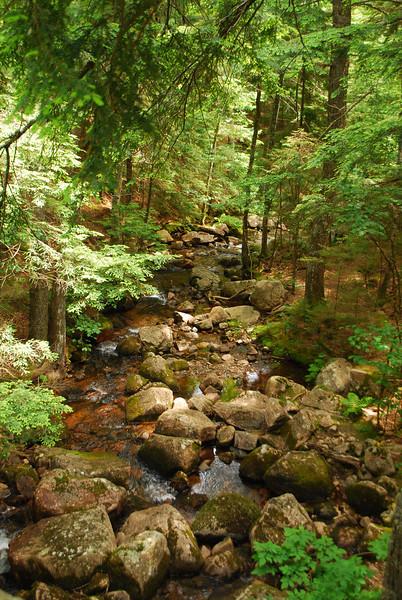 6-22-12 Long Pond-Jordan Creek Hike, ME 041