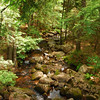 6-22-12 Long Pond-Jordan Creek Hike, ME 041