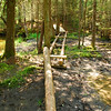 6-22-12 Long Pond-Jordan Creek Hike, ME 025