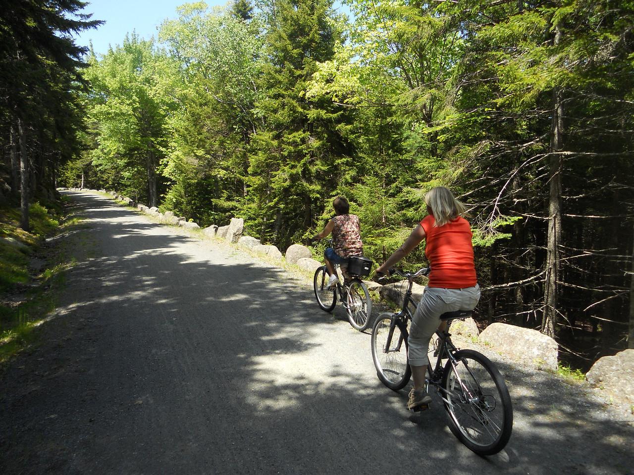 6-10-12 Buzzy pics, Acadia Bike Ride 045