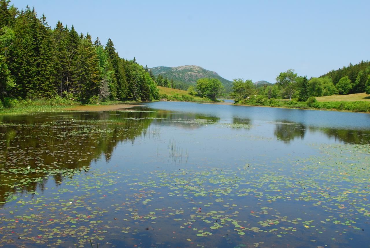 6-22-12 Long Pond-Jordan Creek Hike, ME 008