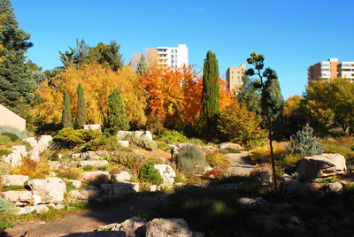 10-22-13 Ft Collins, Denver Botanical, Boulder CO 049