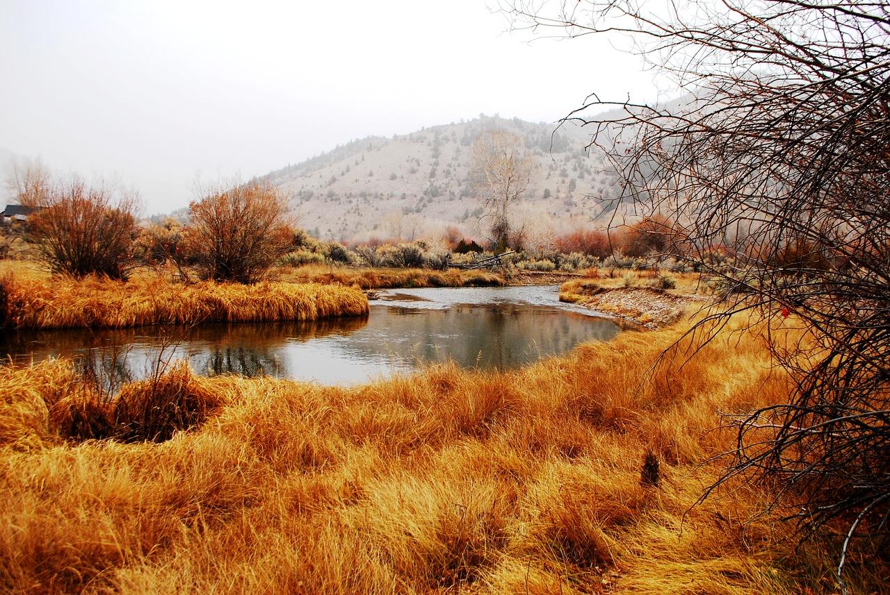 11-16-13  Bannock State Park,  MT 068