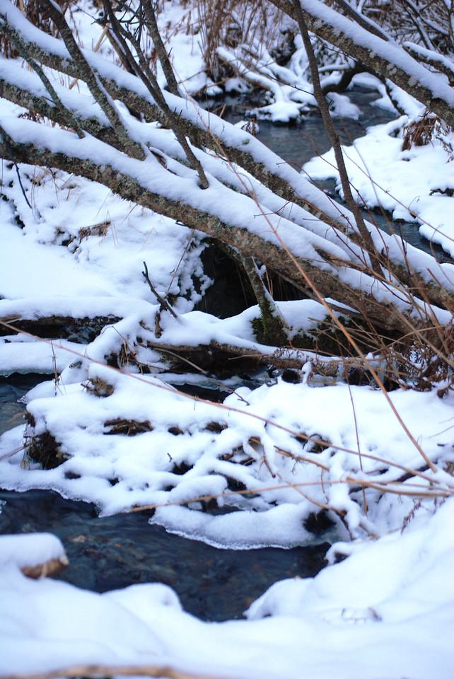 Icy creek on hike