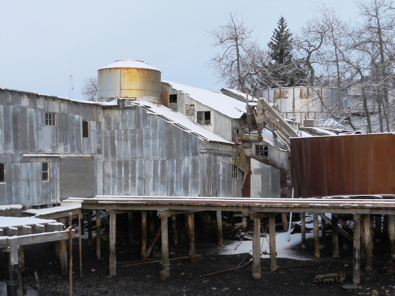 3-12-14  Mesa, Otters, More snow, Zachar Bay AK 025