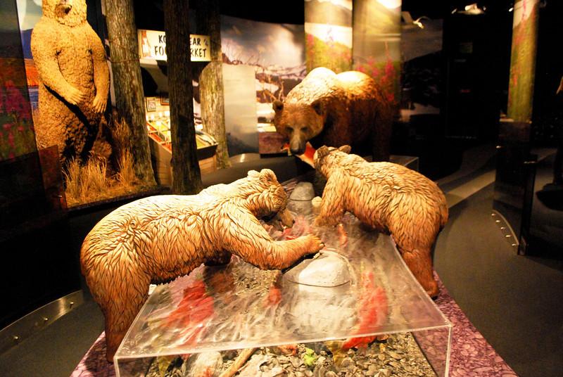 Wildlife Museum.