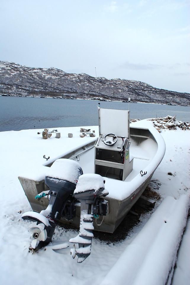 3-12-14   Otters, snow, Zachar Bay AK 031