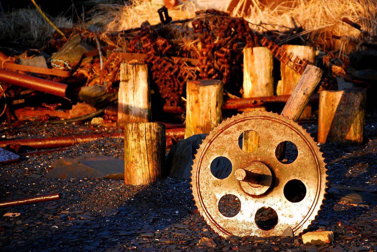 Cannery debris