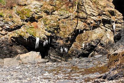 3-21-14  Hike to Bear Camp, Deer,  Zachar Bay AK 005