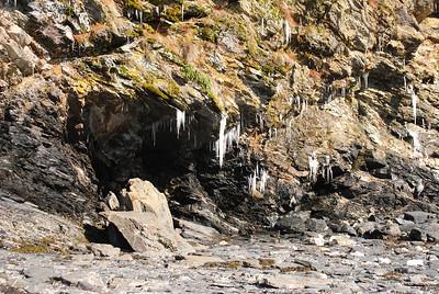 3-21-14  Hike to Bear Camp, Deer,  Zachar Bay AK 002